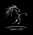 horse symbol on black background vector image