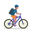 man on a mountain bicycle vector image
