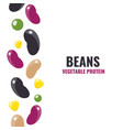 set of beans elements vector image