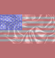 silk stars and stripes vector image