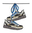 sneakers on wire sketch color engraving vector image
