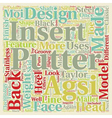 Taylor Made Golf Putters text background wordcloud vector image vector image