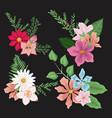 black background with set decorative bouquet vector image vector image
