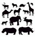 black silhouettes african animals on white vector image