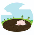 little pig playing in a mud puddle vector image