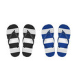 realistic 3d striped flip flop set closeup vector image