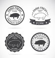 Set of pig label vector image vector image