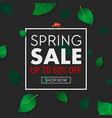spring sale background banner with frame vector image vector image