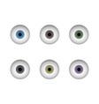 a set of eyeballs human eye vector image vector image
