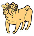 cute little pug dog vector image vector image