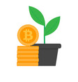 growth bitcoin flat vector image vector image