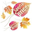 Set of Autumn Sale tags EPS 10 vector image
