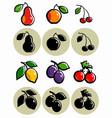 set stylized fruits vector image