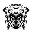 tiger 0015 vector image vector image