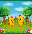 two baby chicken playing in the green field vector image vector image