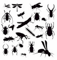 with insect silhouettes isolated on white vector image vector image