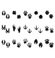 grungy Animal Footprint Track icon vector image