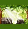 a tropical rainforest background vector image vector image