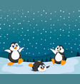 beautiful view with three penguin vector image vector image
