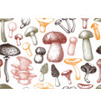 edible mushrooms background forest plants vector image vector image