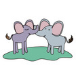 elephants couple over grass in colorful silhouette vector image vector image
