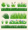 grass nature green element vector image vector image