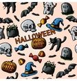 HALLOWEEN handdrawn pattern with pumpkin witch vector image vector image