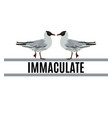 immaculate hand drawn seagull vector image vector image
