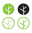 leave logo design set nature logo in circle vector image