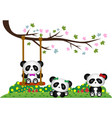 Panda playing under tree branch vector image vector image
