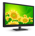 television tv natural sunflower vector image vector image