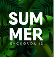 tropical palm leaf summer background vector image vector image