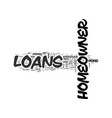 what can homeowner loans be used for text word vector image vector image