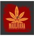 Cannabis - marijuana leaf on grunge background for vector image vector image