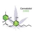 cbd molecule on white vector image