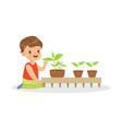 cute little boy learning about plants during vector image vector image