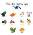 healthy eyes foods infographics healthy eyes vector image