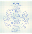 meat doodles squared paper vector image vector image