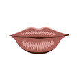 object lips pink isolated vector image vector image
