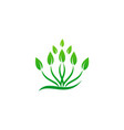 plant green leaf grass logo vector image