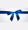 realistic blue bow with horizontal ribbon vector image