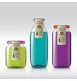Template of bottle juice jam liquids vector image