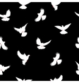 Birds silhouettes - flying seamless pattern Dove vector image vector image
