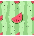 Colorful seamless pattern of watermelon vector image vector image
