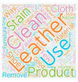 Look good in leather How to clean leather text vector image vector image