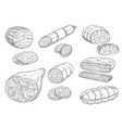 sketch iocon of meat and sausage products vector image vector image
