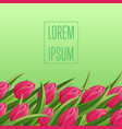 spring banner with blooming tulip and copy space vector image vector image