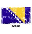 bosnia flag design vector image