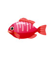 tropical exotic coral fish bright colorful vector image vector image