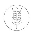 wheat ear icon design vector image